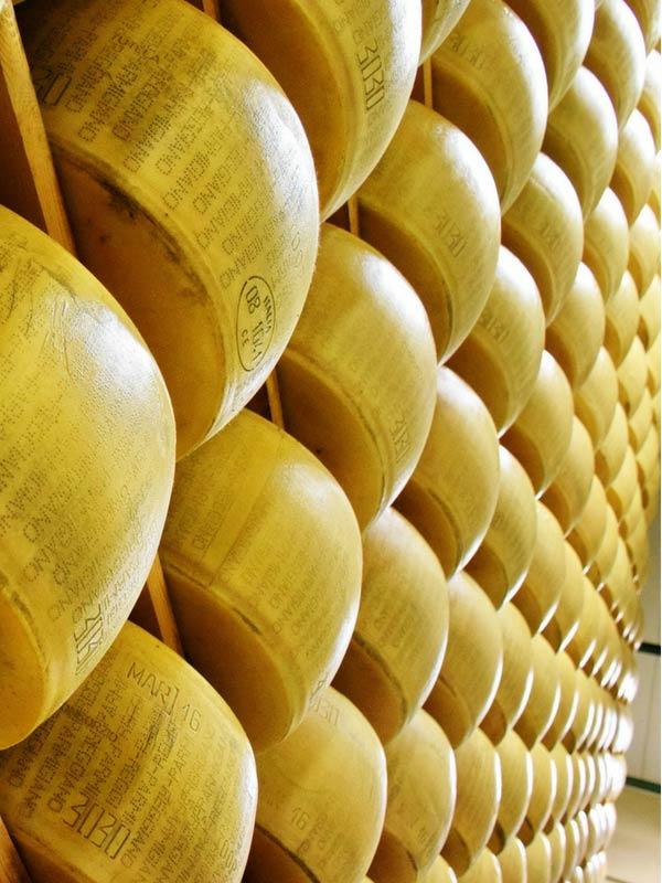 Guida turistica - Formaggi stagionati - Grana Padano - Parmigiano Reggiano
