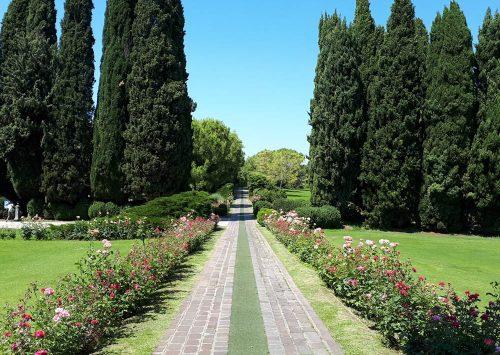 Сигурта Парк